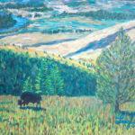Bison Range  ~   John Webster & Francesca Droll, Bigfork, MT 2006 • 24 x 18