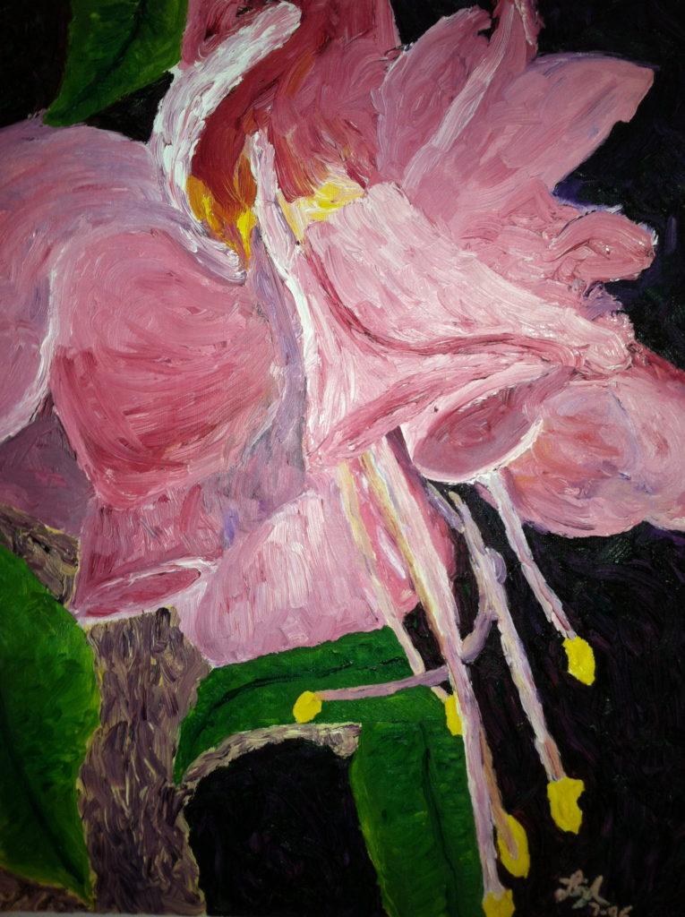 Fuchisia Flower  ~   Heron Haas, Brooklyn NY 1996  •  16 x 20