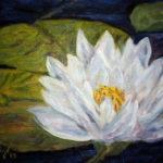 White Waterlilie  ~   Anne Edwards, La Verne, CA 2013  •  14 x 11