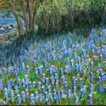 Texas Bluebells  ~   Jeni Schaeffer, Nashville, TN 2008  •  20 x 36
