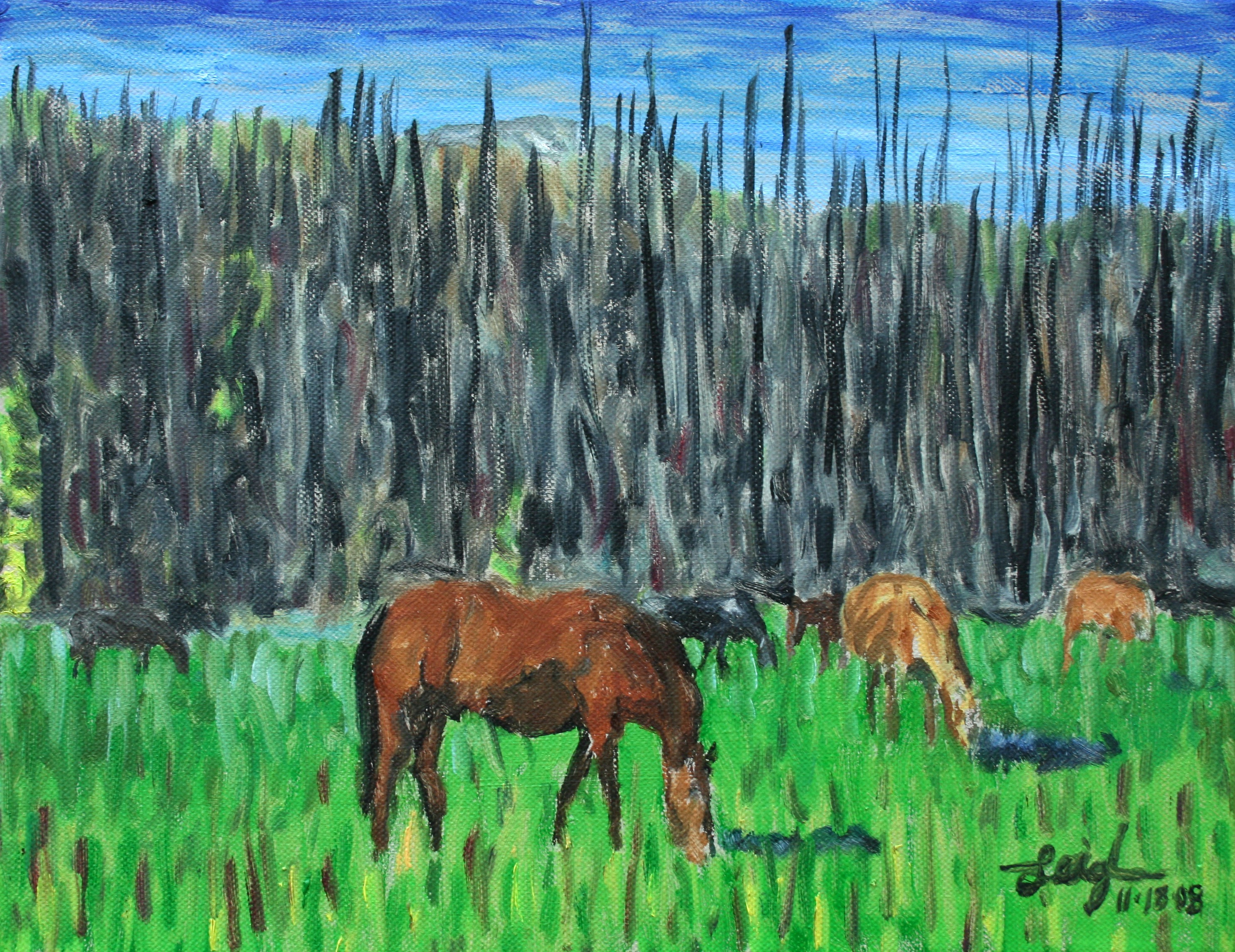 A Sketch from the Bob  ~   Martin Droll, Longmont, CO 2008 • 14 x 11