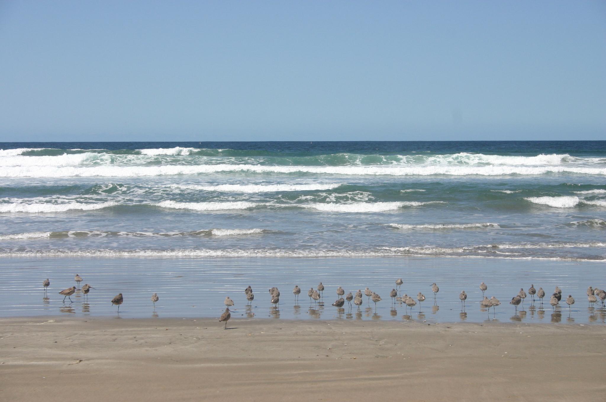 Original photo, Morro Bay