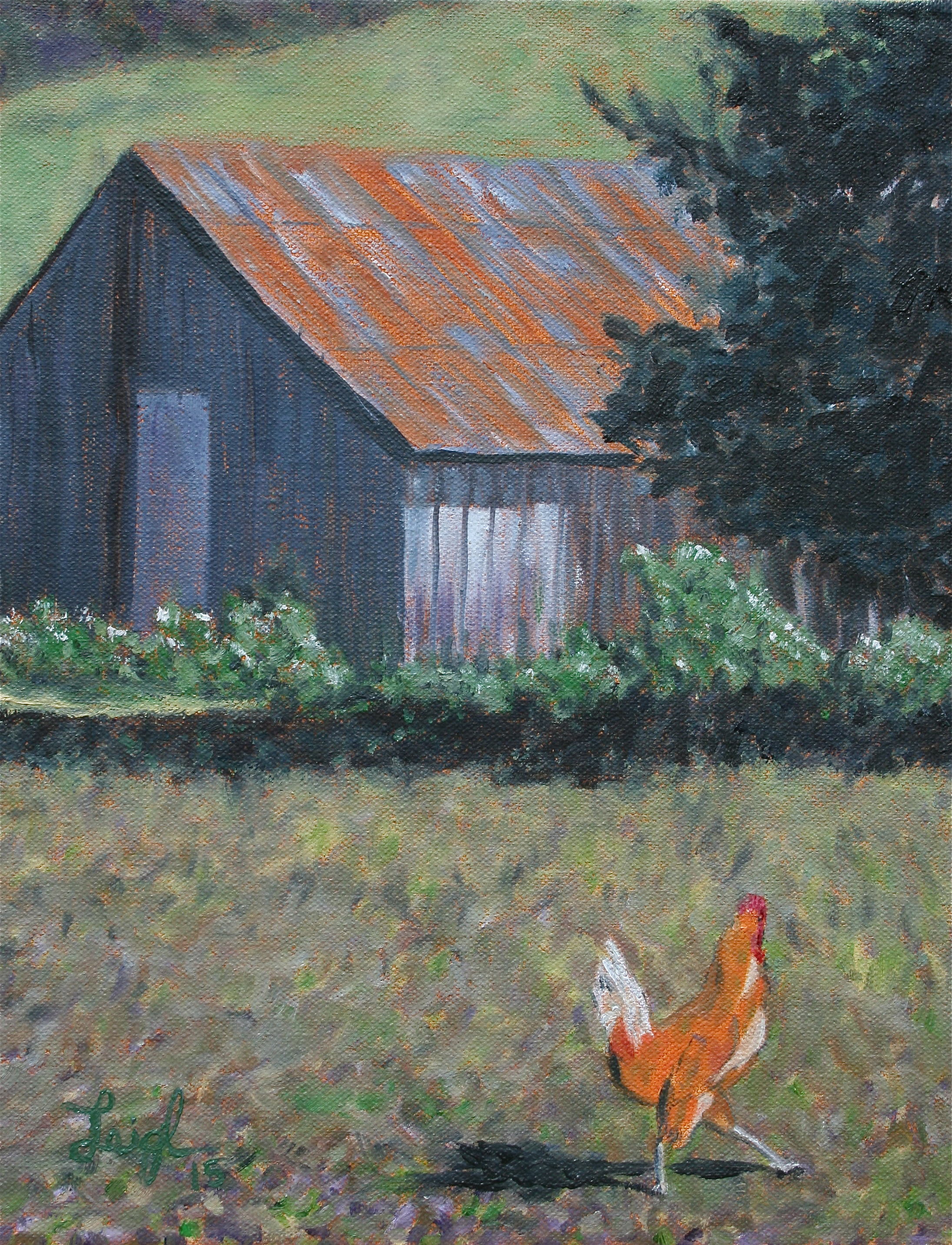 Farmyard Chicken  ~   Greg Spiegal & Cindy Copeland 2015  •  11 x 14
