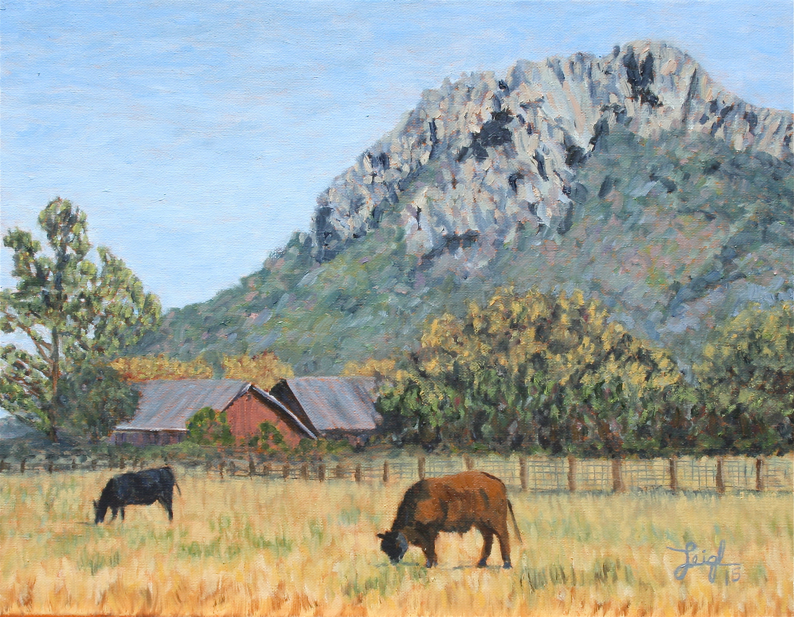 Cows near Hollister Peak  ~   Erica Pitkin, Fort Leavenworth, KS  2015 • 18 x 14