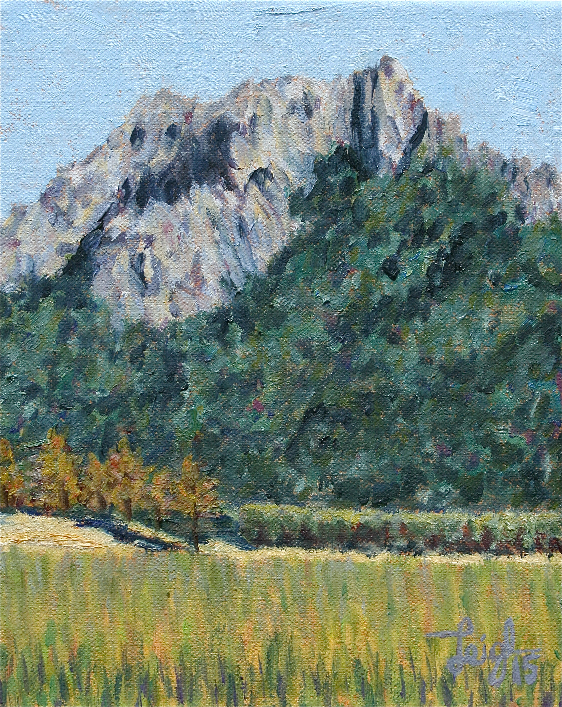 Hollister Peak #4  ~   Ray & Sally Lemberg, Prescott, AZ  2015 • 8 x 10