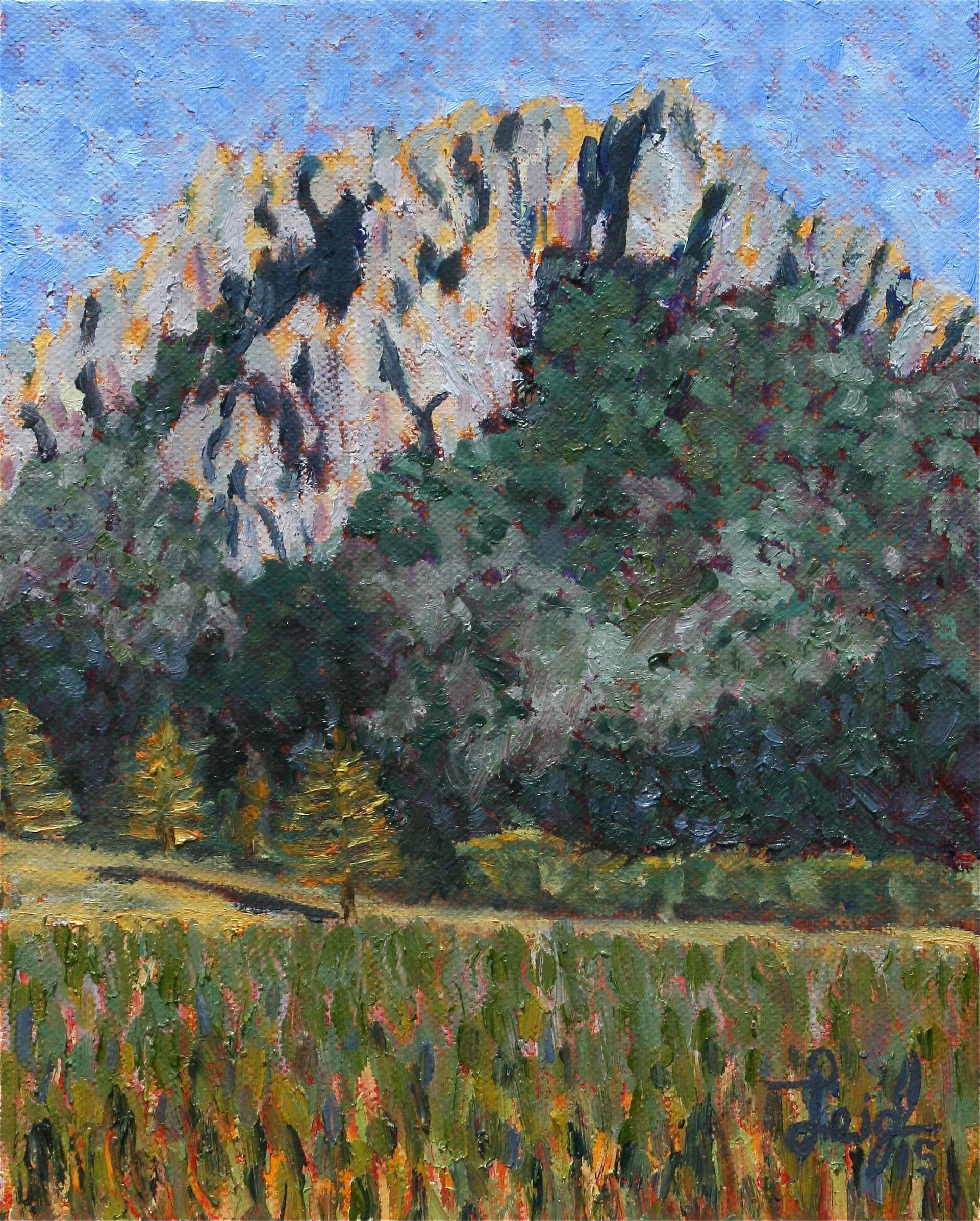 Hollister Peak #3  ~   2015 • 8 x 10
