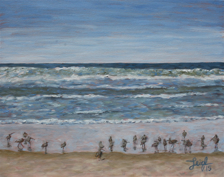 Shorebirds  ~   2015  •  20 x 16