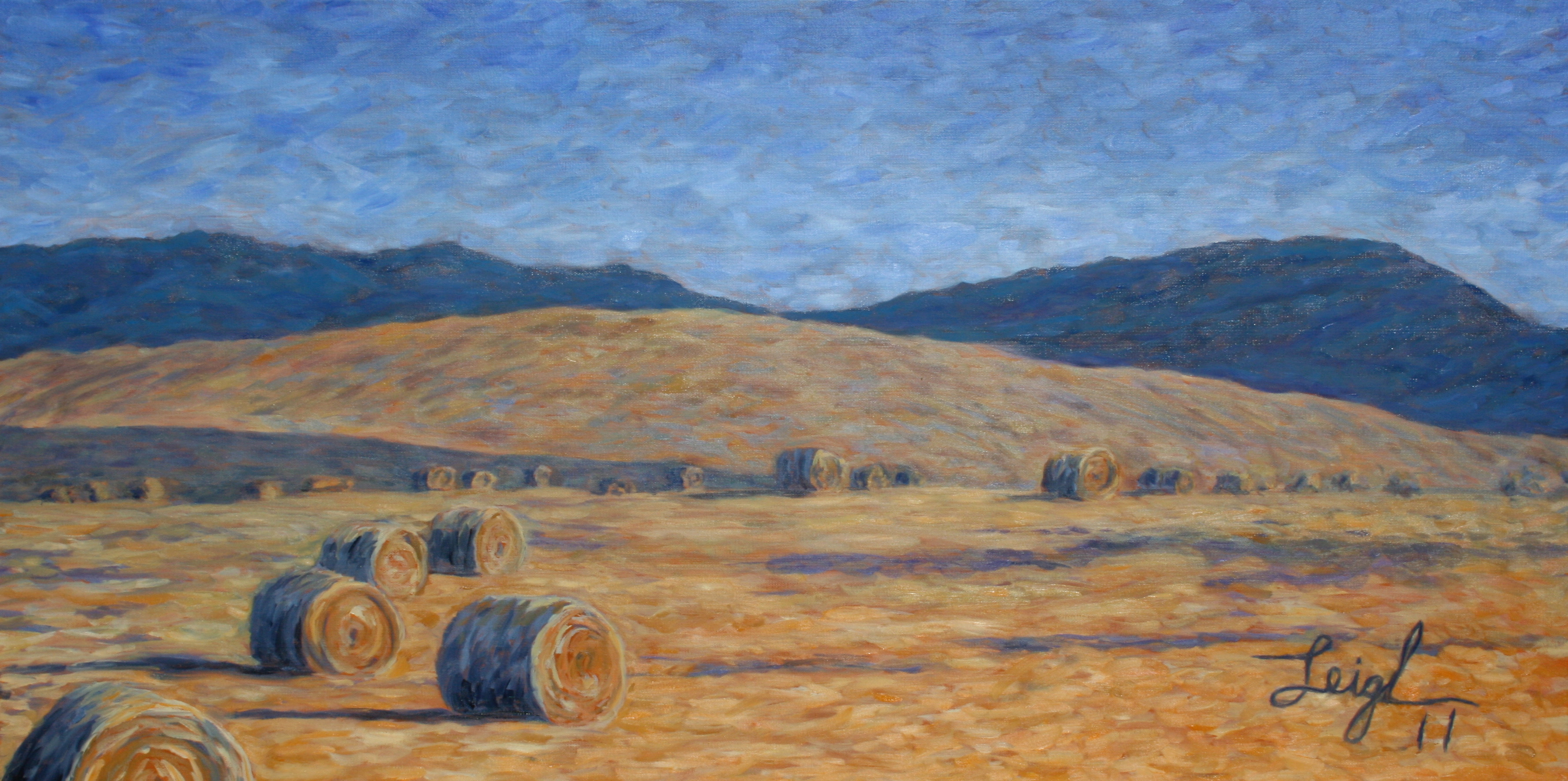 Montana Hay Rolls  ~   The Hannell Family, Vikbolandet, Sweden 2011 • 48 x 24