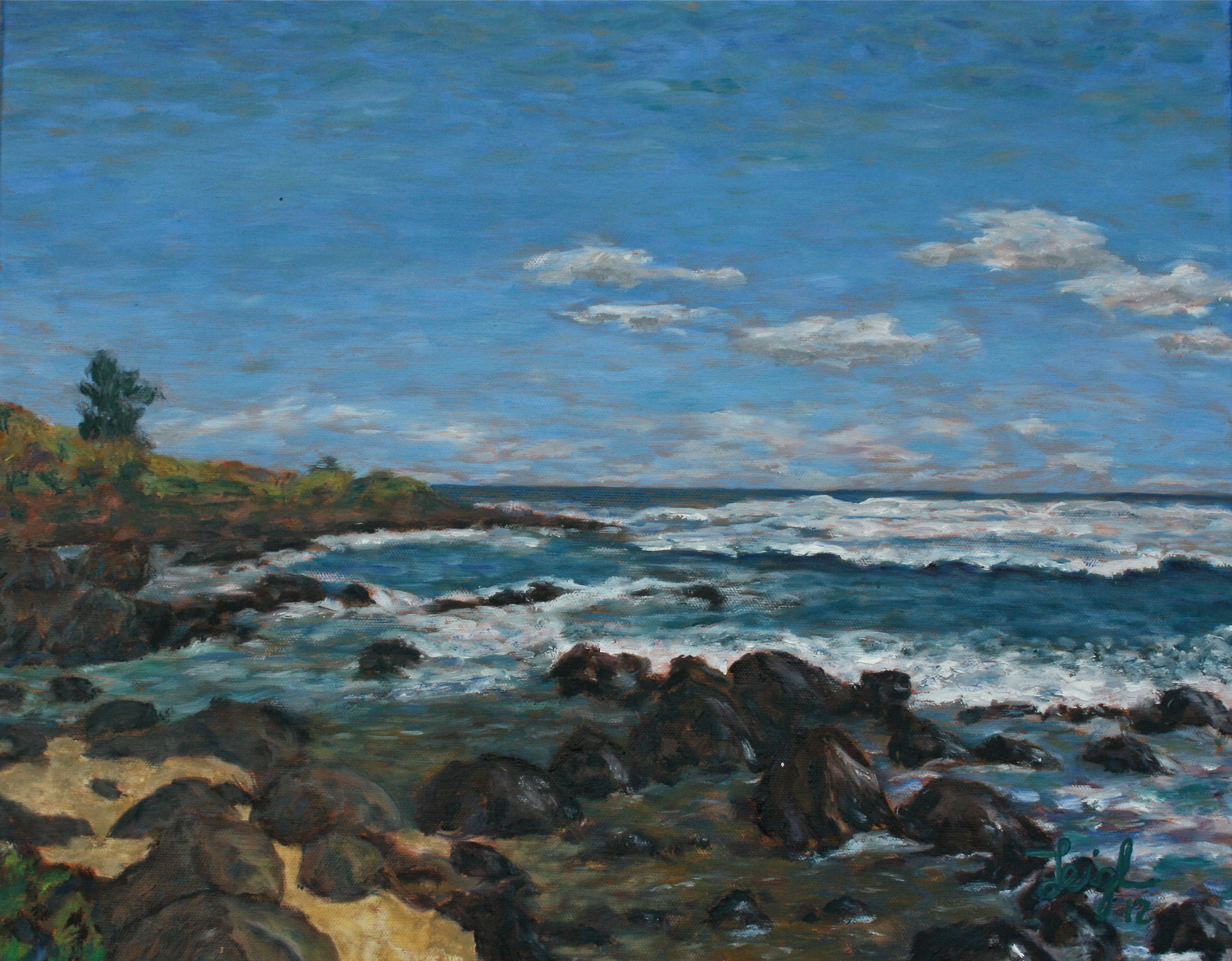 Beach on Kauai  ~   2012 • 20 x 16