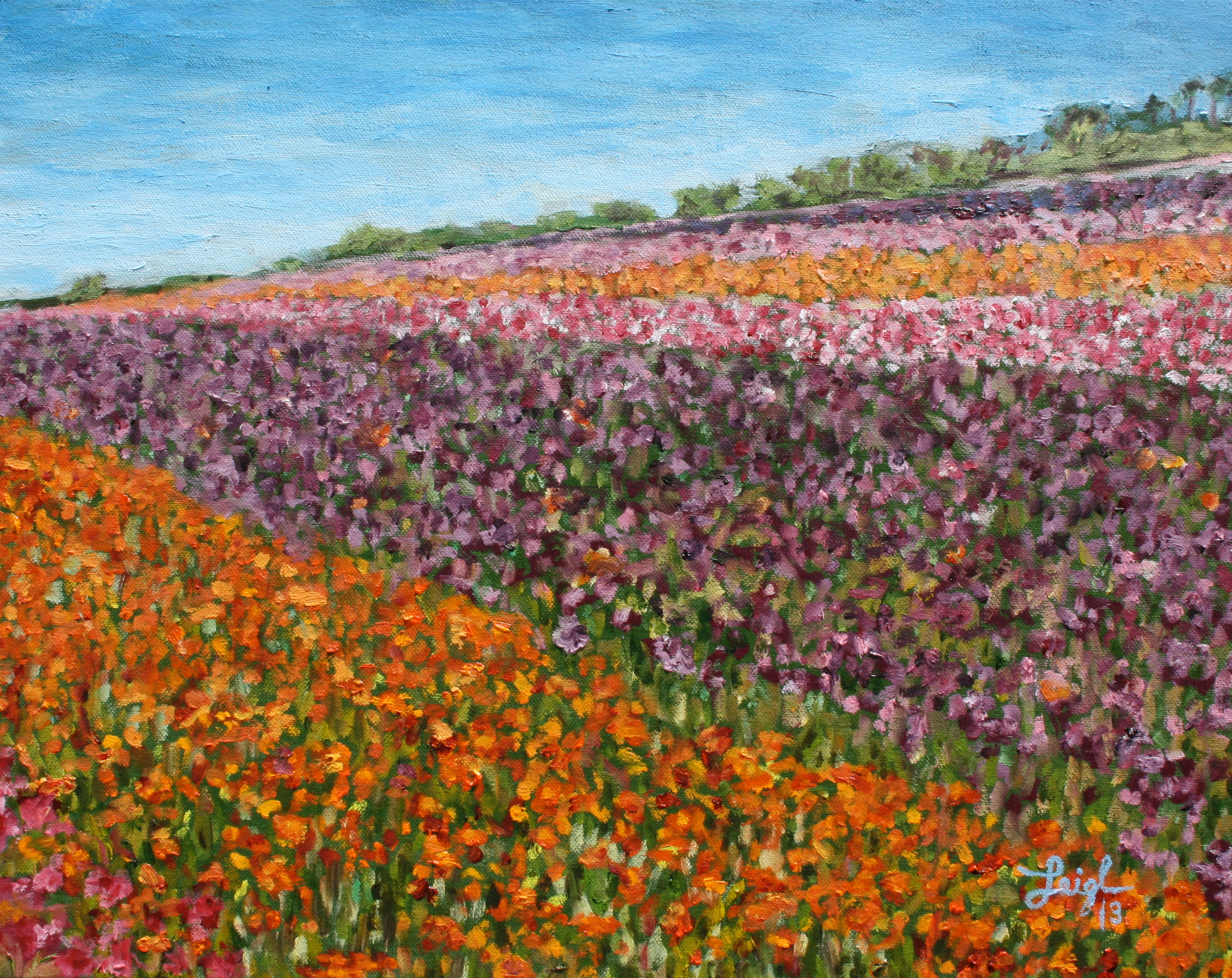 Carlsbad Flower Fields #1  ~   Martha Levine, Mt. Gretna, PA 2013  •  20 x 16