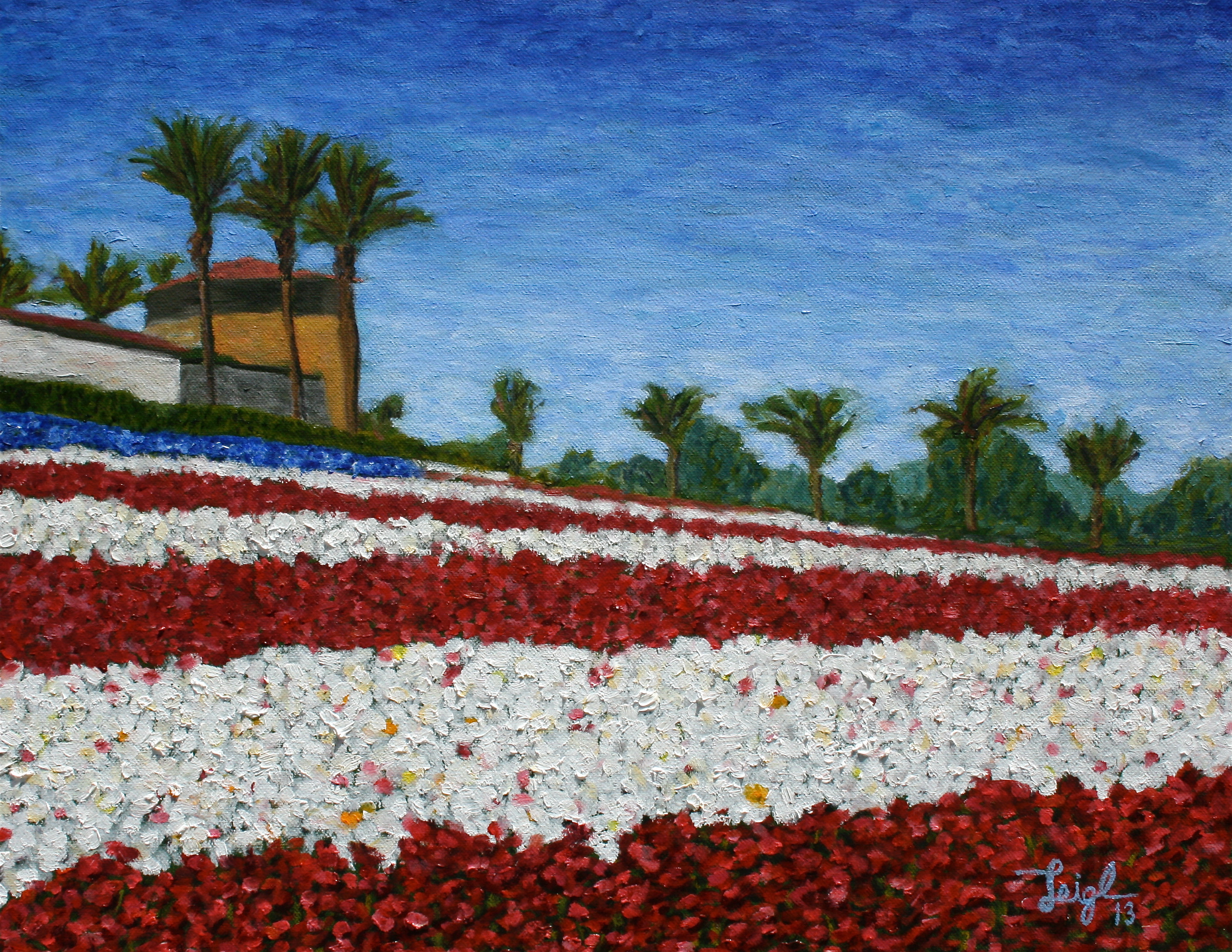 Carlsbad Flower Fields #3 (Old Glory)  ~   Mark Simmers, Oceanside, CA  2013  •  20 x 16