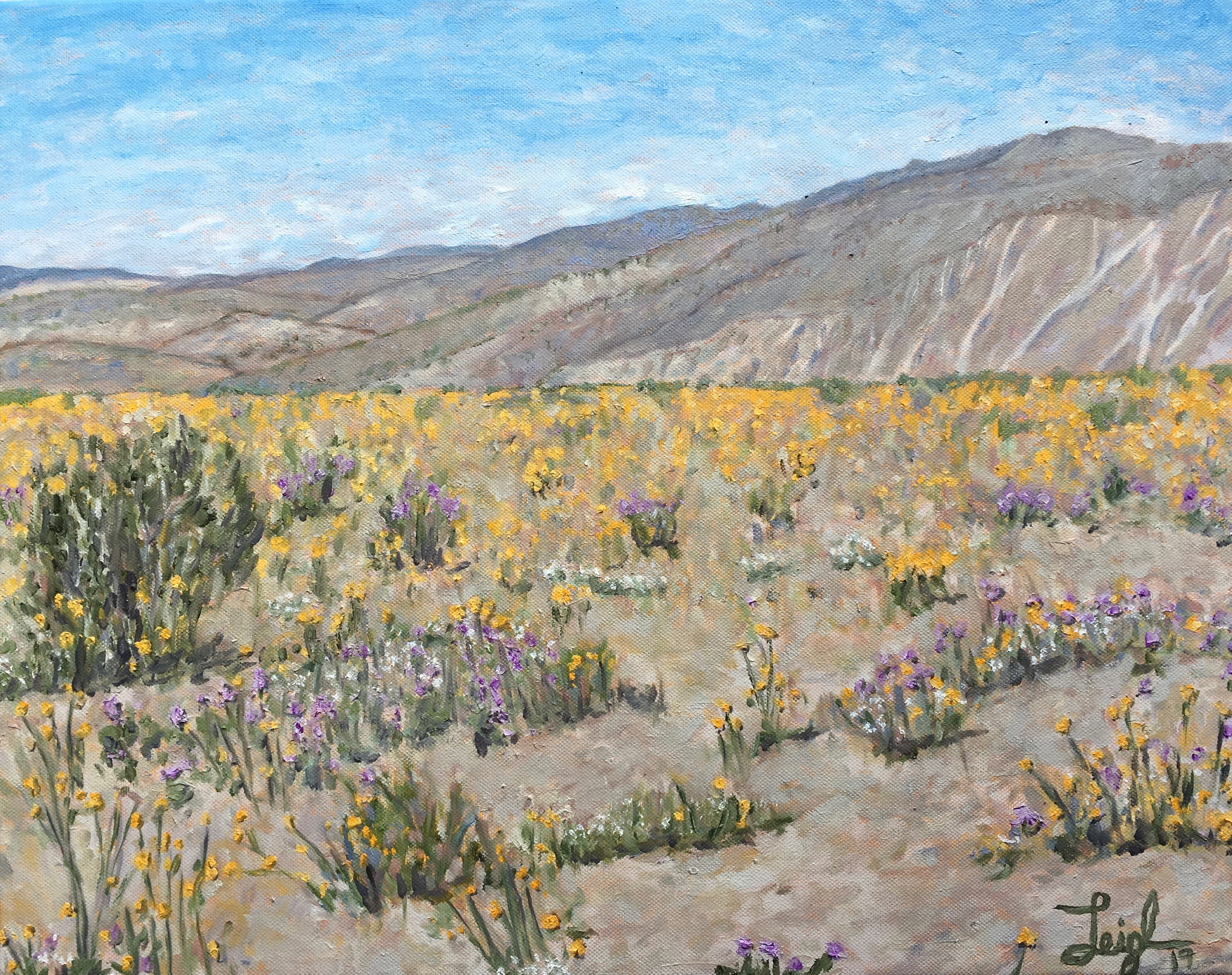 Anza Borrego Super Bloom #1  ~  Annie Moyer, Brooklyn, NY 2019  •  20 x 16