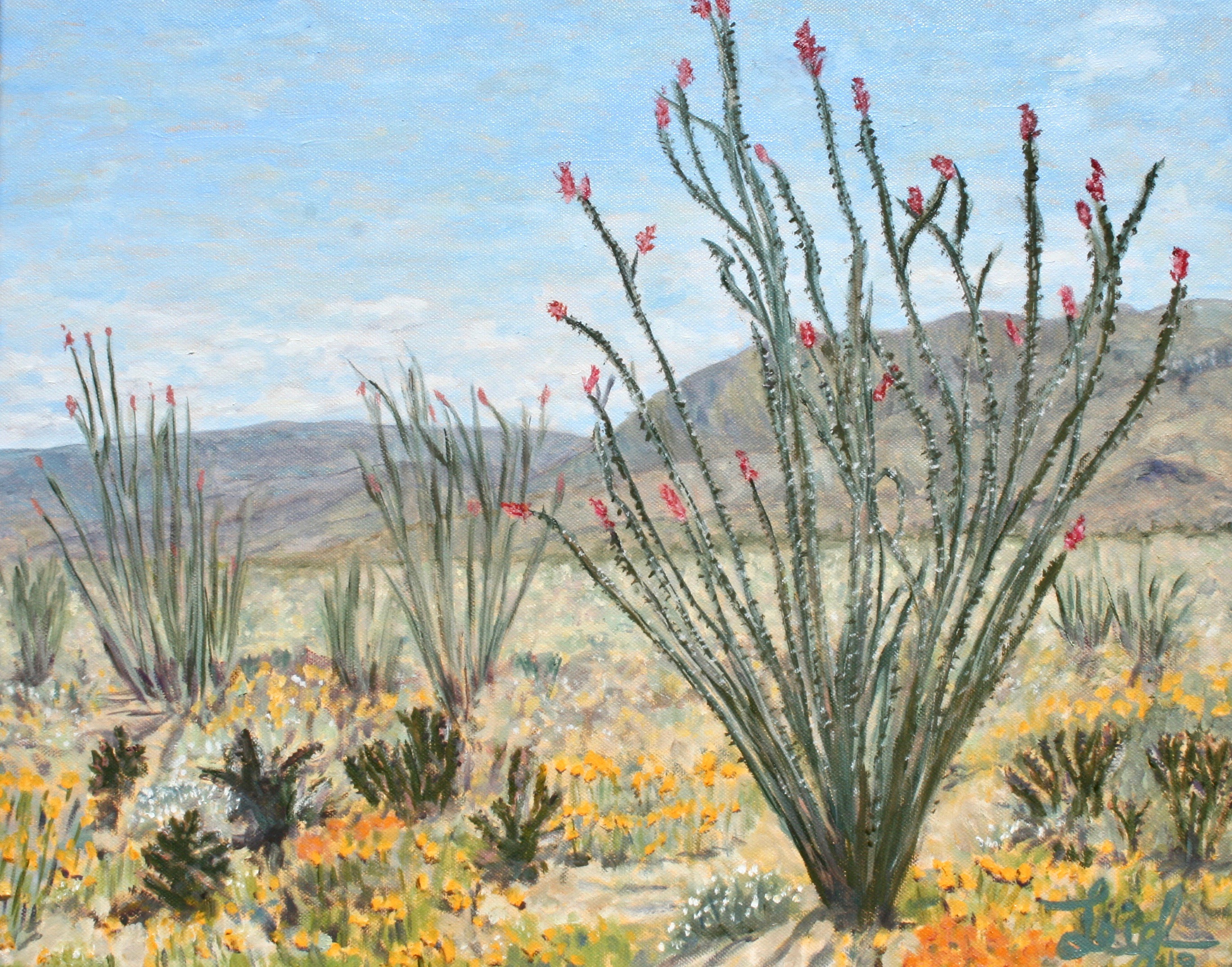 Anza Super Bloom #2 (Ocotillos)  ~  Art and Rochelle Lipson, Cottonwood Heights, UT 2019  •  20 x 16
