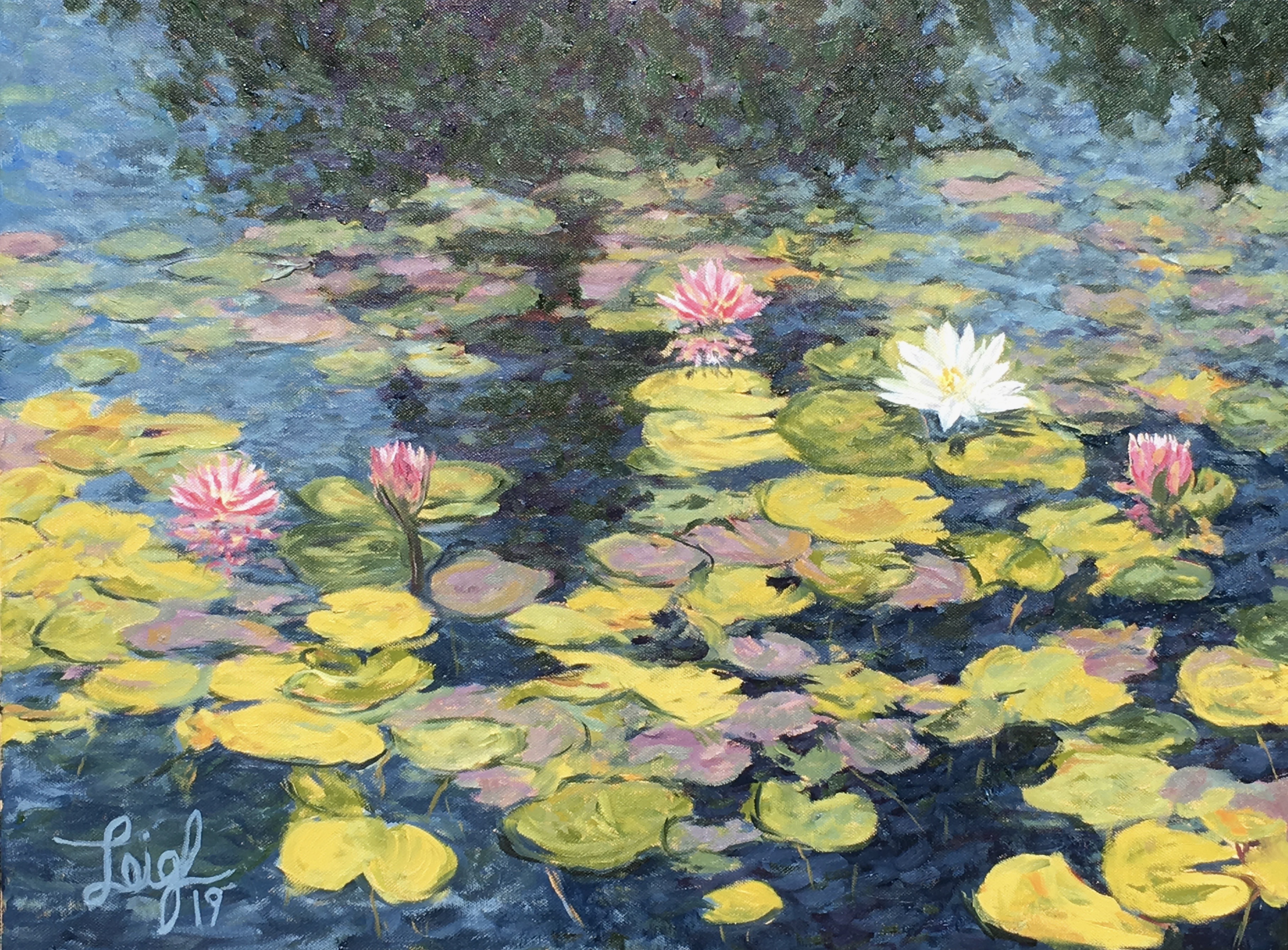 Water lilies in Balboa Park #2 2019  •  24 x 18