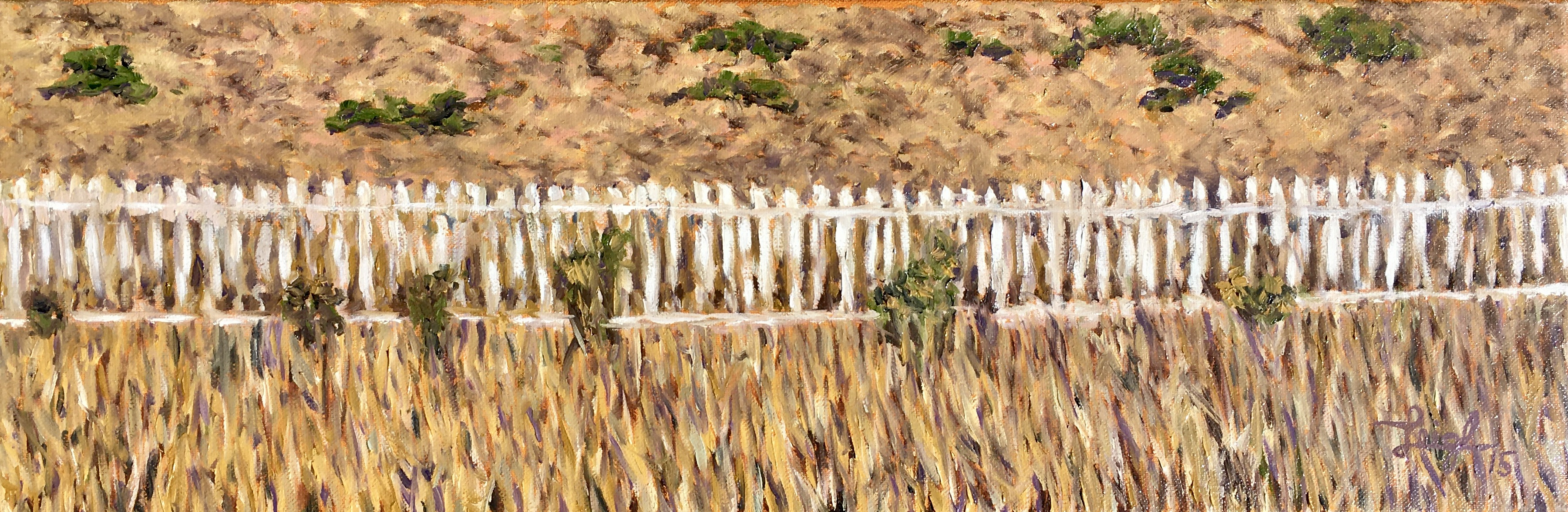 Fence on a May Gray Day  ~  Private Party, Santa Barbara, CA 2015  •  24 x 8