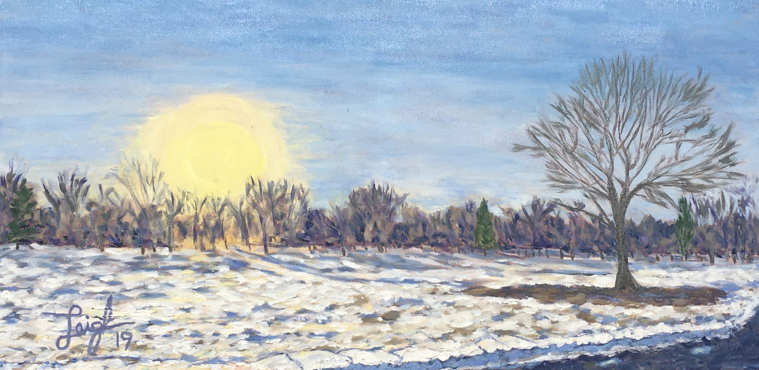 Central Park Denver (Snowy Sunset) 2019  •  30 x 15